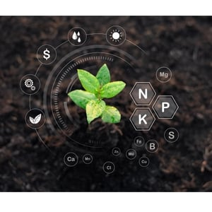 Water Soluble Fertilizers Testing Services