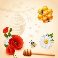 Honey Testing Services