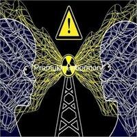 Radiation Testing Services
