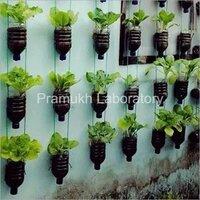 Botanical Testing Services