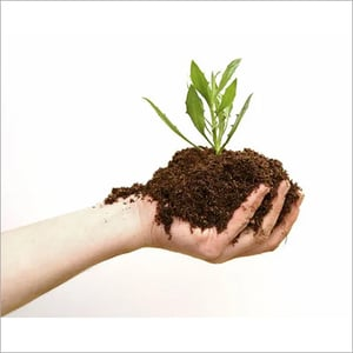 Botanical Pesticide Testing Services