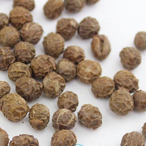 Wu Tong Zi  Chinese Herb Medicine Firmiana Platanifolia Seeds