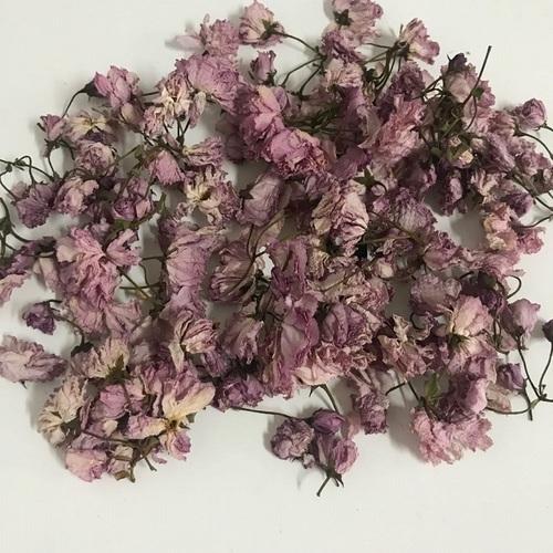 Wholesale Organic Dried Sakura Flower Cherry Blossom Tea