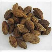 Harad Herbs