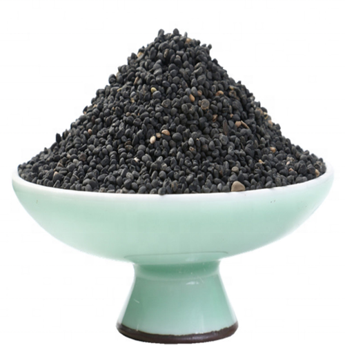 Fang Feng Factory Supply Radix Saposhnikoviae Seed For Sowing