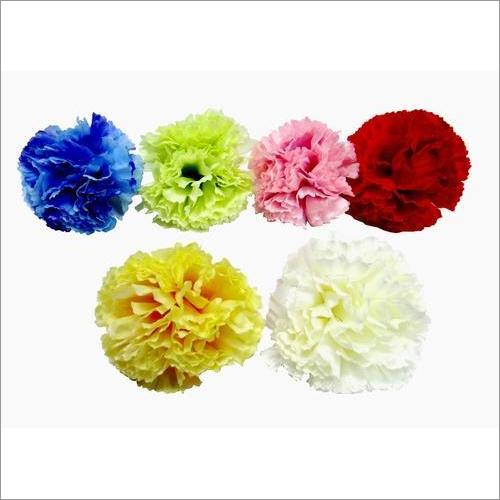 Carnation Loose Flower