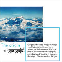 Pooja Gangajal