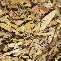 Sanay Leaf