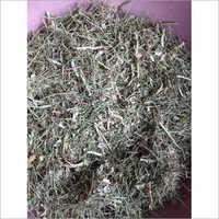 Jawasa Herb