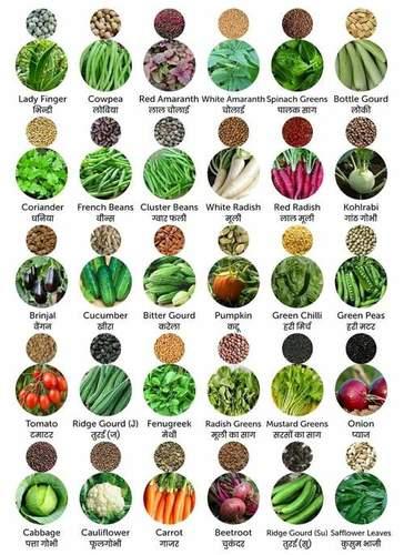 Fresh Vegetable Seeds