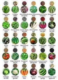 Vegitable Seeds