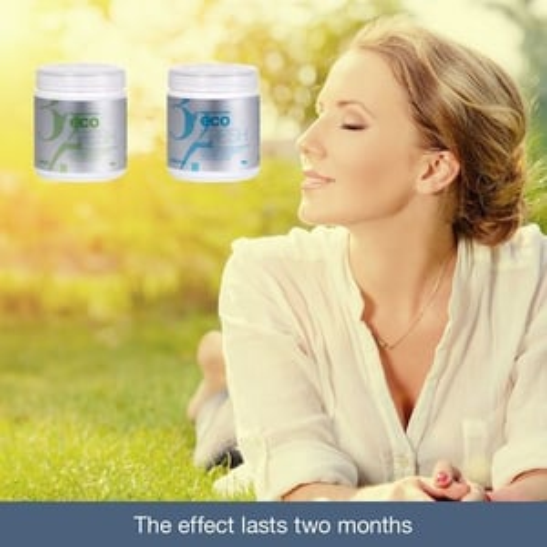 Eco Fresh Air Deodorant Purifying Gel