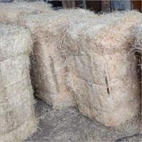 Wood Wool Cooling Pad