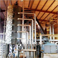 Cooker Conditioner Plant