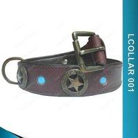 Dog Fancy Leather Collar