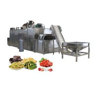 Industrial  full automatic food drying tunnel vegetable dryer tunnel fruit drying machine