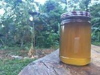 Jungle Honey