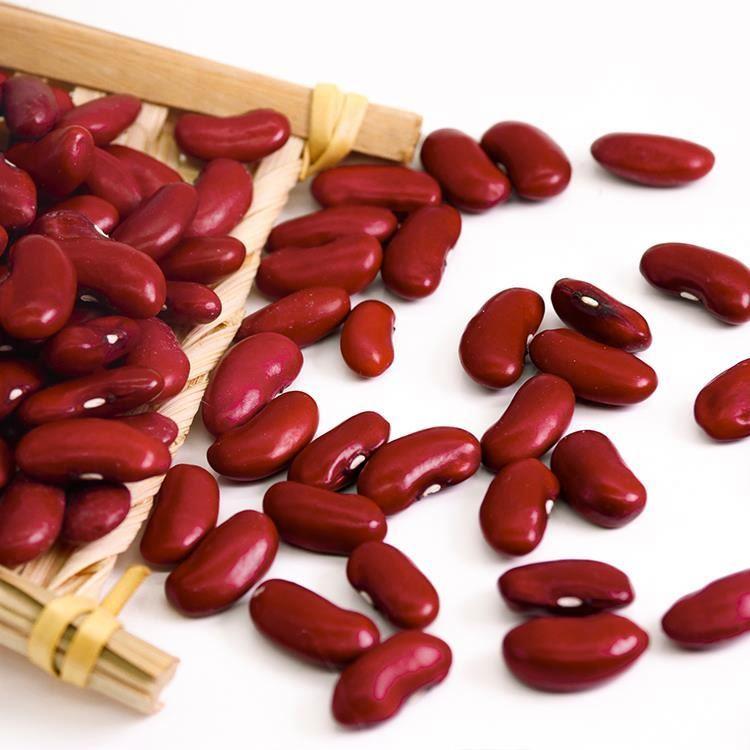 Dark Kidney Beans
