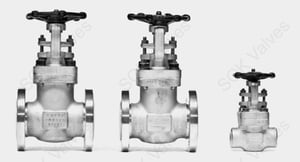 SQK A182 F304L Stainless Steel Gate Valve