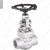SQK A182 F316L Stainless Steel Gate Valve