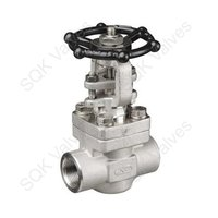 SQK A182 F321 Stainless Steel Gate Valve