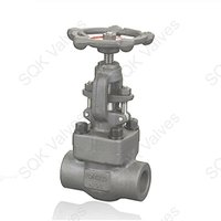SQK A182 F11 Alloy Steel Gate Valve