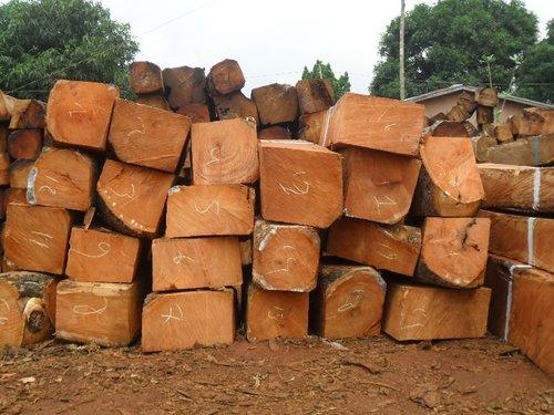 Kosso Wood, Rose Wood, Lumber, Squared Logs