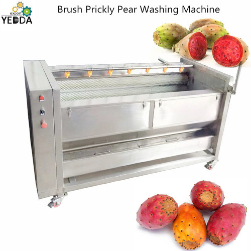 Brush Prickly Pear Washing Cleaning Machine