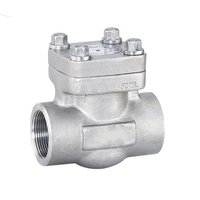 SQK Socket Weld Swing Check Valve
