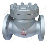 Swing Check  Valves By Materials