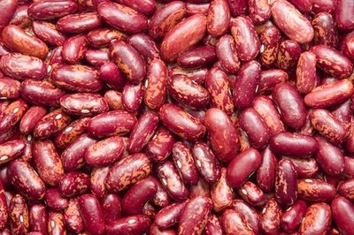 Top Quality Kidney Beans(White , Black, Red)
