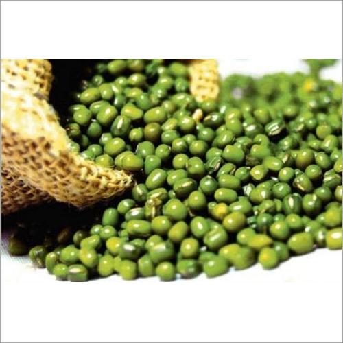 Green Gram ( Mung Bean )