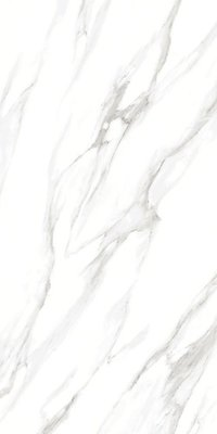 GALAXY CARRARA Polished Glazed Porcelain Vitrified Tiles