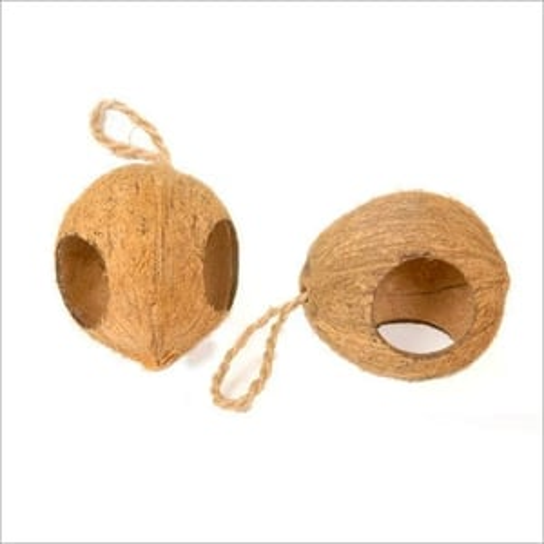 Coconut Two Hole Bird Feeder