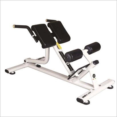 Roman Chair Application: Tone Up Muscle