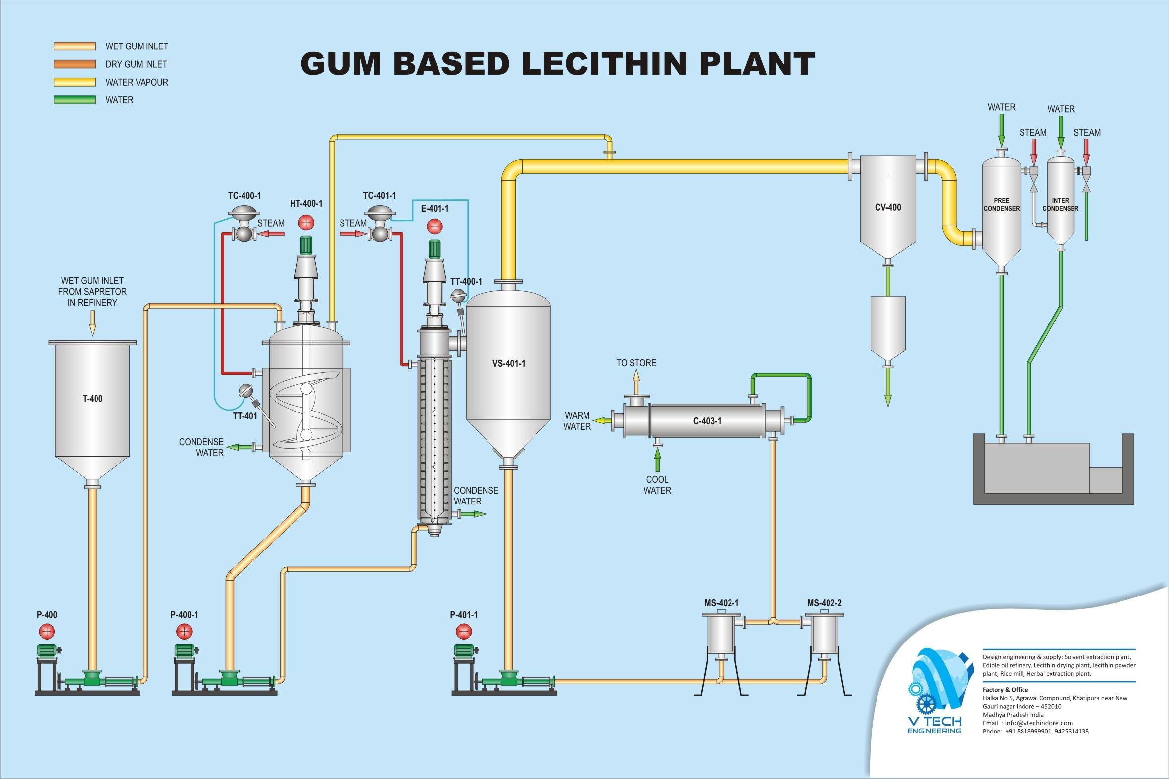 Lecithin Plants