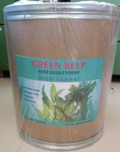 Green Seaweed Powder