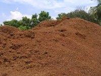 Coco Peat Powder