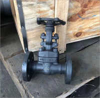 Forged Steel Globe Valve Flanged End