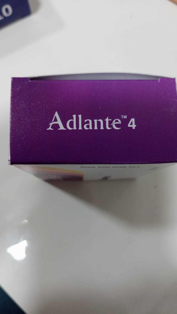 Adlante 4