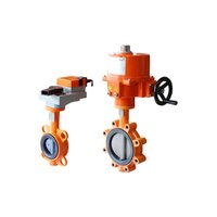 Belimo Electric Operated Motorized Butterfly Valve