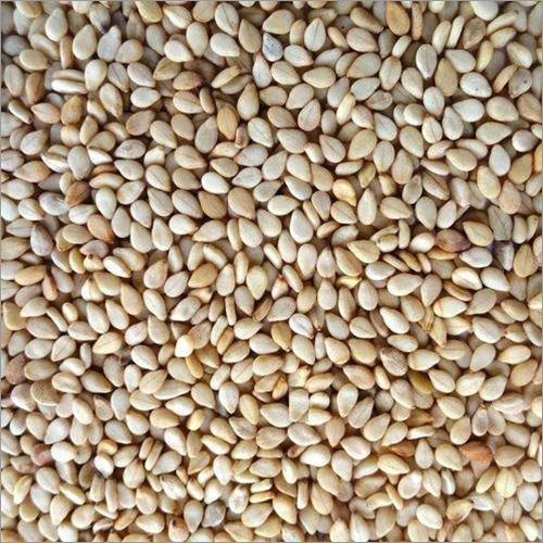 Natural Wihte Sesame Seeds