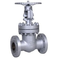 L And T Ibr Gate Valve Flanges End