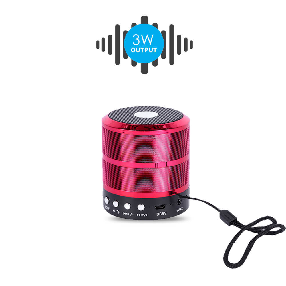 Bluei Rocker R1 High Bass,5.0 Bluetooth Version with Built - in FM Radio,Aux input, Call Function & SD Card Support Portable Bluetooth Speaker
