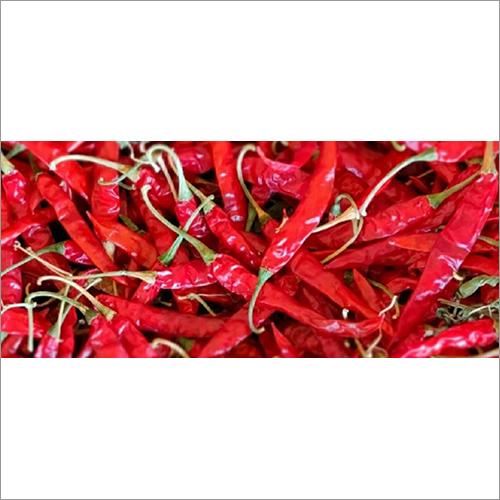 Dry Teja Chilli