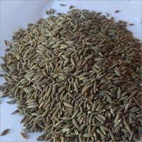 Edible Cumin Seeds