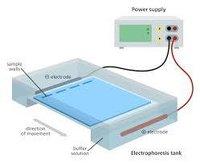 Labcare Export Electrophorsis