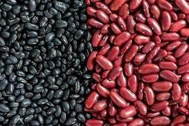 Red Kidney Beans/dark Red Kidney Beans/white Kidney Beans