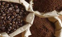 Roasted & Grain Coffee Powder (Filter Coffee)