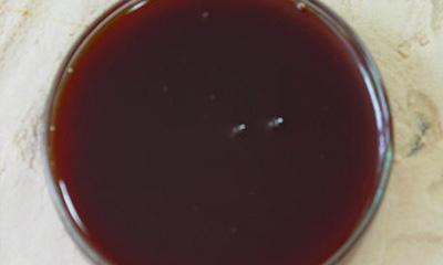 Liquid Malt Extract